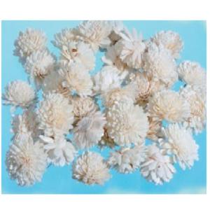 Capete flori Ming Albe set