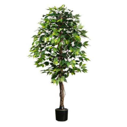 Ficus artificial basic verde 150cm