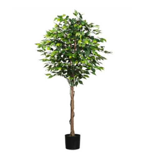 Ficus artificial basic verde 180cm