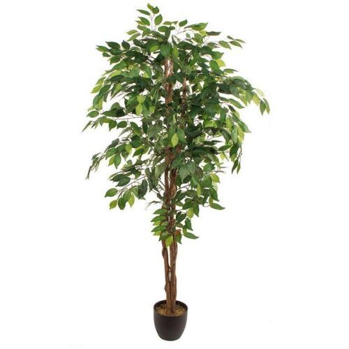 Ficus artificial benjamina 180 cm original