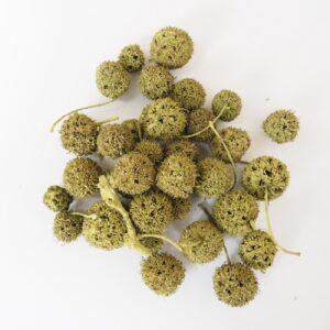 Fructe decorative uscate verde oliv