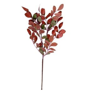 Frunza Aronia color