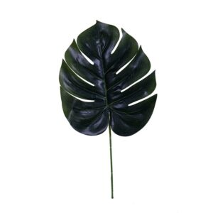 Frunza Philodendron A075