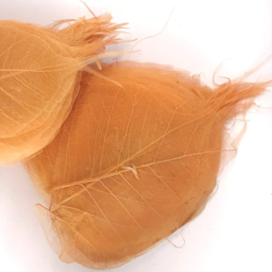 Frunze Voal Piersica 2