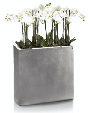 Ghiveci plante dreptunghi compozit fibra beton usor gri nisip orhidee