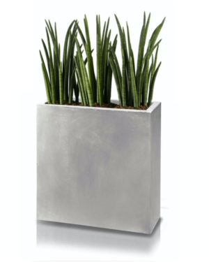 Ghiveci plante dreptunghi compozit fibra beton usor gri nisip sansevieria
