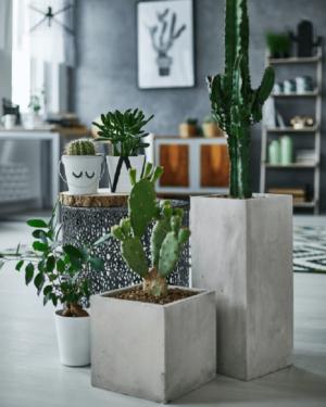 Ghiveci plante inalt compozit fibra beton usor gri nisip cactusi