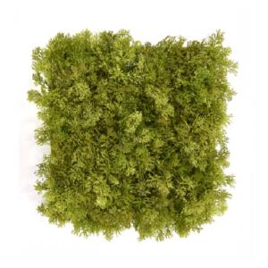 Gradina verticala licheni artificiali verde cald 01