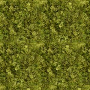Gradina verticala licheni artificiali verde cald