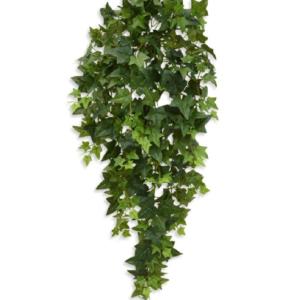 Iedera Artflora 90cm