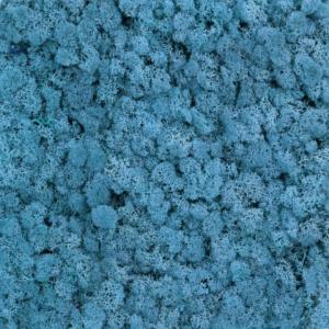 Licheni Albastru Deschis 500gr 1