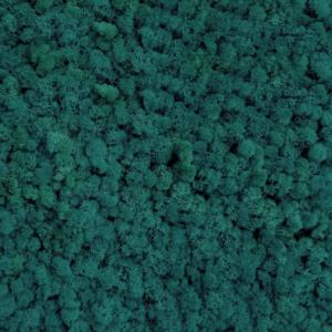 Licheni conservati Smarald