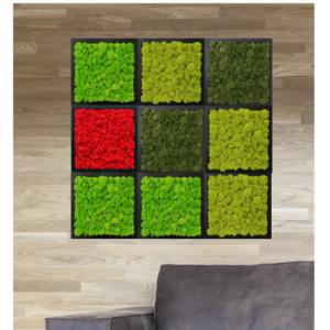 Living tablouri vegetale licheni conservati C