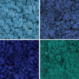 Mix Box Ocean Blue 500gr 1 e1610649740707