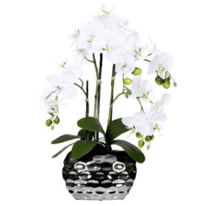 Orhidee alba in ghiveci argintiu 55cm