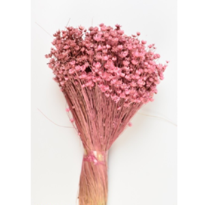 PU Glixia Marcela Light Pink