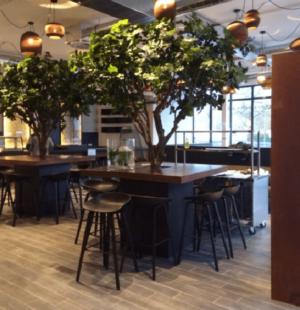 Smochin artificial premium 250cm restaurant