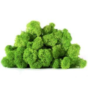 licheni vrac artflora green apple