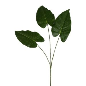 philodendron artificial H77