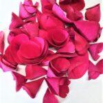 Flori lemn fucsia