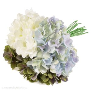 Hortensia SET multicolor h30cm