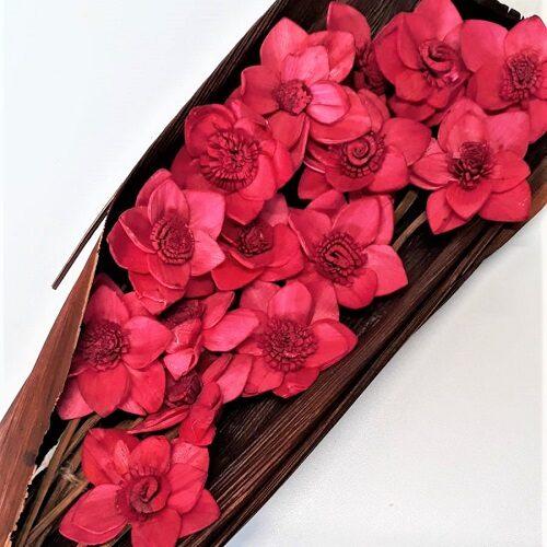 buchet flori acacia fucsia