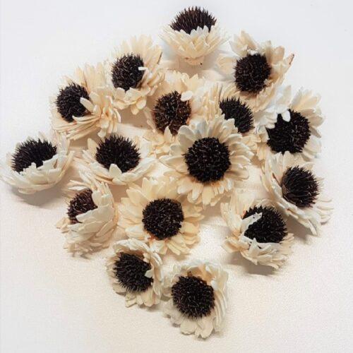 capete flori crizantema natur