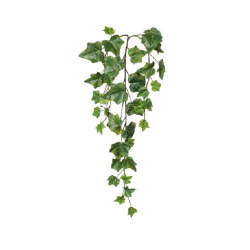 Iedera creanga verde 60cm
