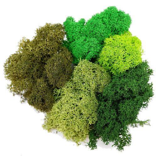 artflora green color